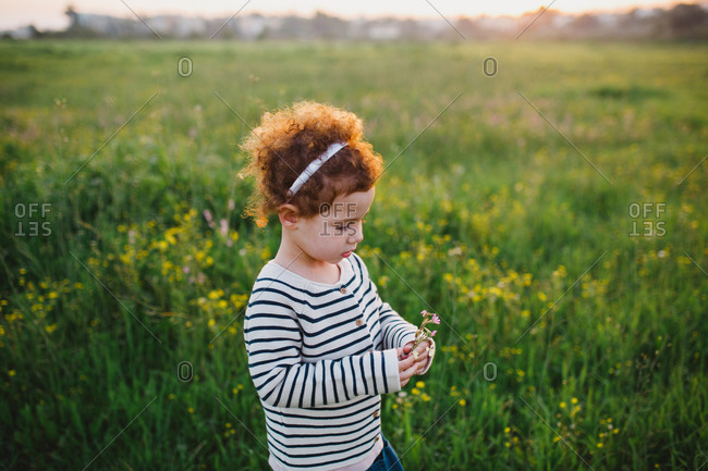 A girl picking  flowers in a green field