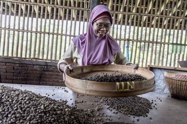 Java, Indonesia - October 18, 2017: Smiling woman working with coffee beans at MesaStila Resort