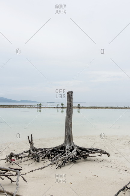 East Beach at Kura Kura Resort, Karimunjawa Archipelago, Indonesia