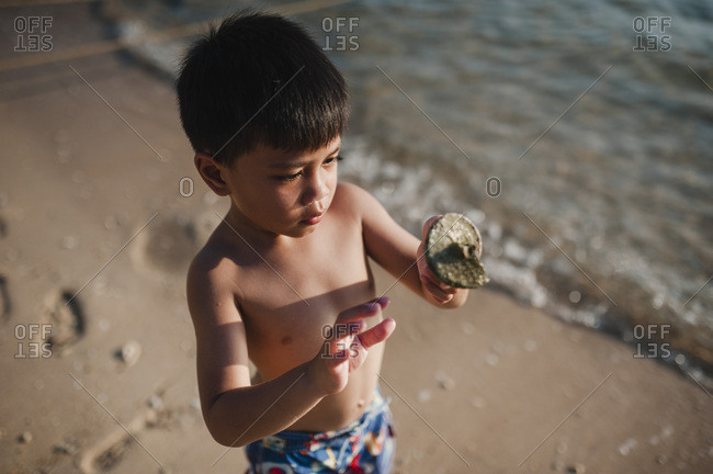 Boy holding a seashell on a beach in Malaysia