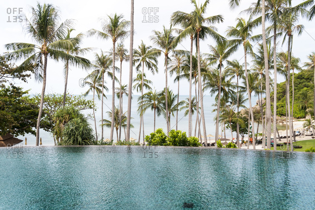 Palm trees and infinity pool at luxury resort on Koh Samui Island in Thailand