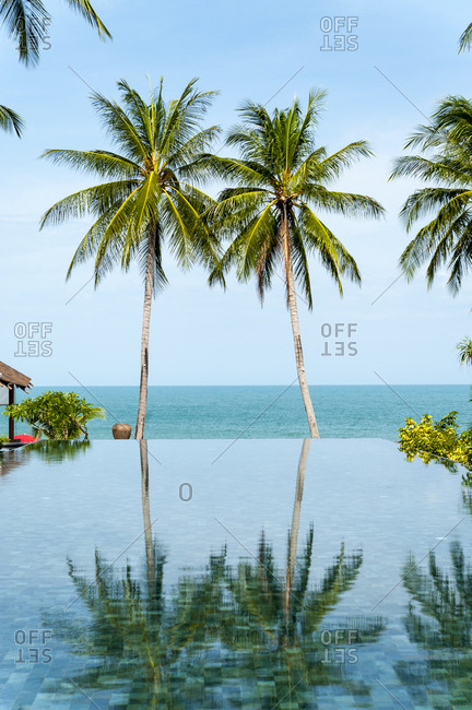Palm trees reflected in infinity pool at the beach on Koh Samui Island in Thailand