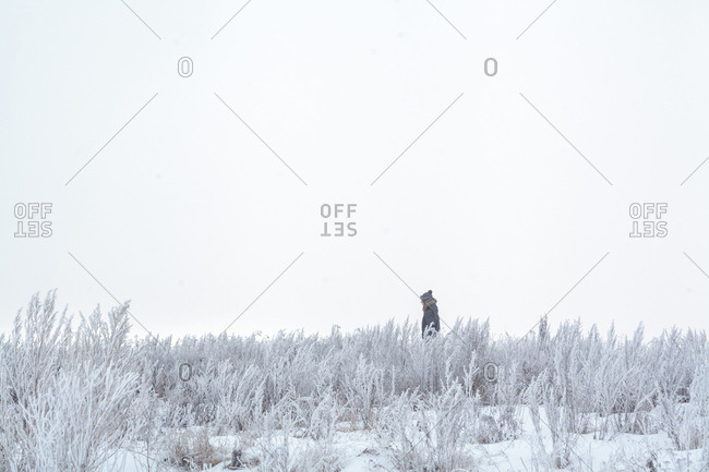 Side view of woman standing amidst plants on field against clear sky during winter