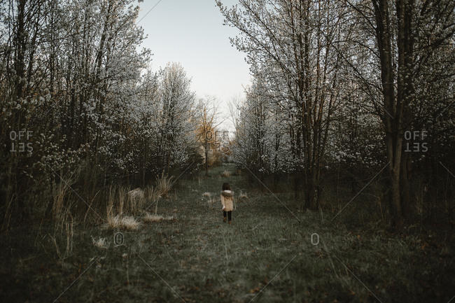 Rear view of girl walking on grassy field in forest during winter
