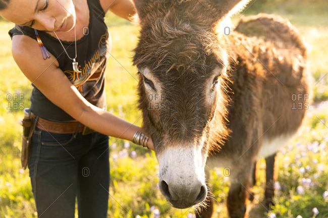 Woman petting a donkey on a farm