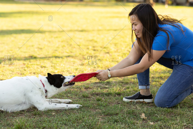 Woman playing with her dog and a toy disc