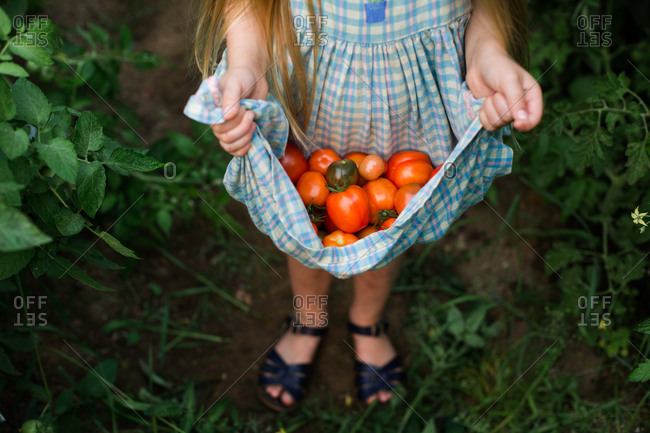 Young girl holding tomatoes in her dress