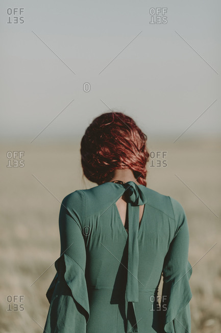 Back view of redhead model in formal dress in pasture