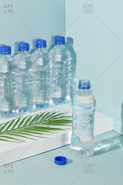 Plastic water bottles and fern in corner of pastel studio backdrop