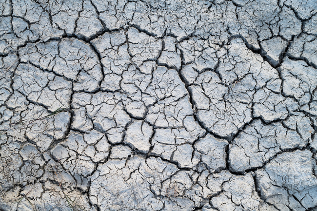 Dry cracked mud detail