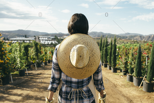 Back view of female nursery worker standing in front of potted plants