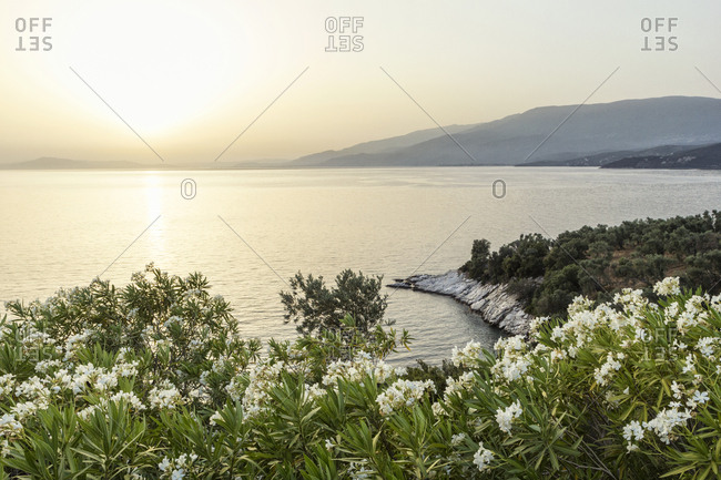 Greece- Thessalia- Lefokastro - Offset Collection