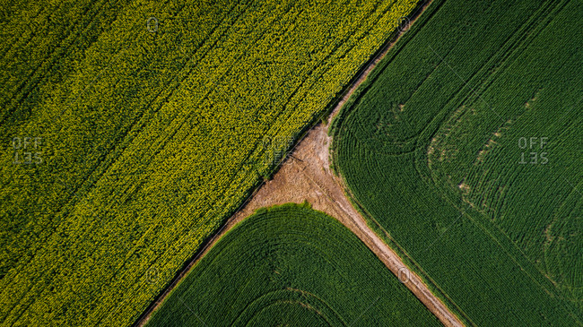 Aerial images over the canola and wheat fields in the Swartland of South Africa