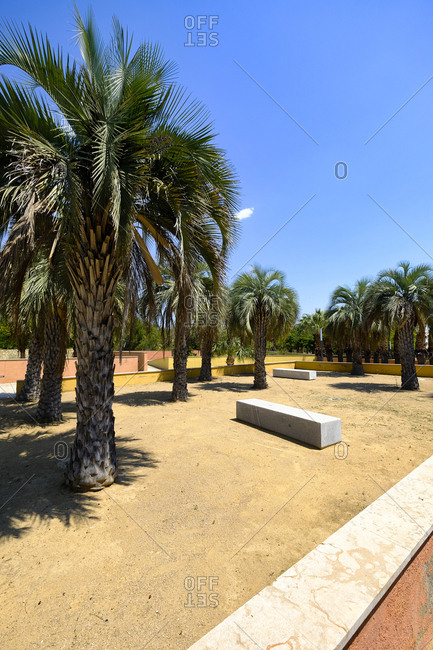 Bench and trees in a public municipal botanical park, Salou, Costa Dorada, Catalonia Spain