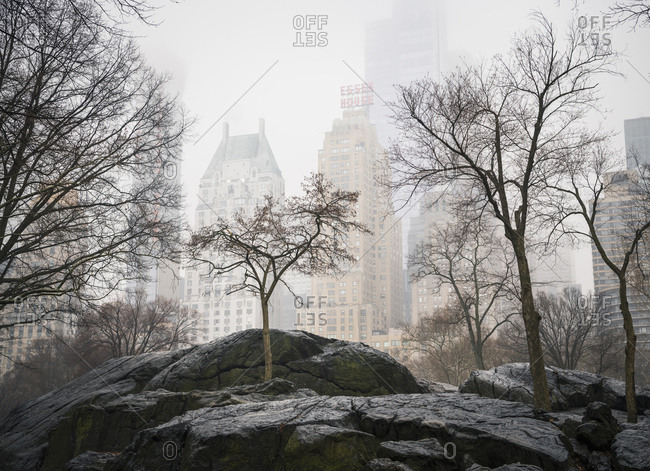 New York City, USA - March 29, 2018: Buildings shrouded in mist as seen from Umpire Rock in Central Park, New York