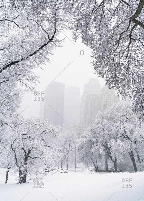 Tall buildings famed by trees blanketed in heavy snow in Central Park, New York City