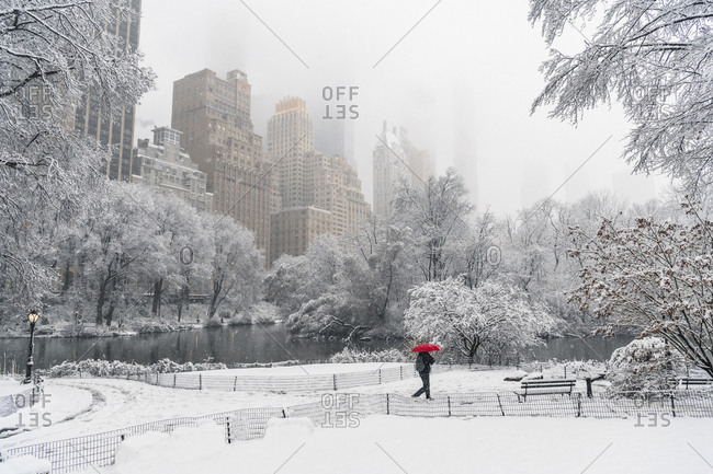 Single person walking through Central Park as snow falls in New York City