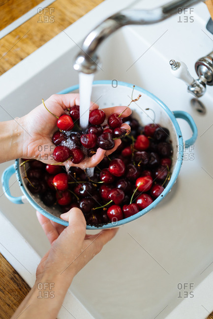 Looking down at hands of man washing colander of ripe cherries under running water