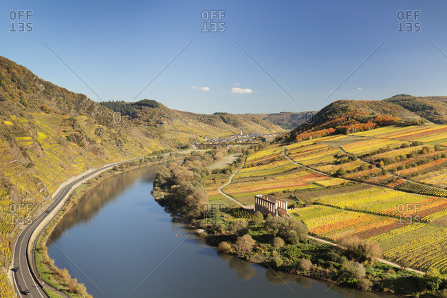 Loop of Moselle River near Bremm with ruined abbey Stuben, Rhineland-Palatinate, Germany, Europe