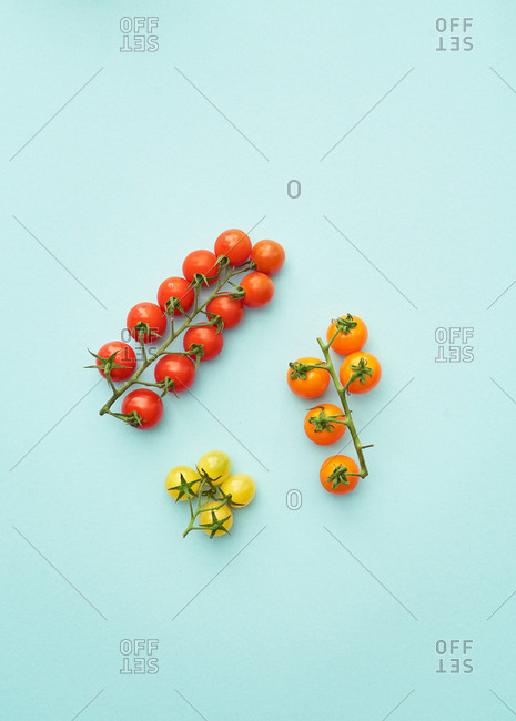 Three different varieties of vine tomatoes on pastel background