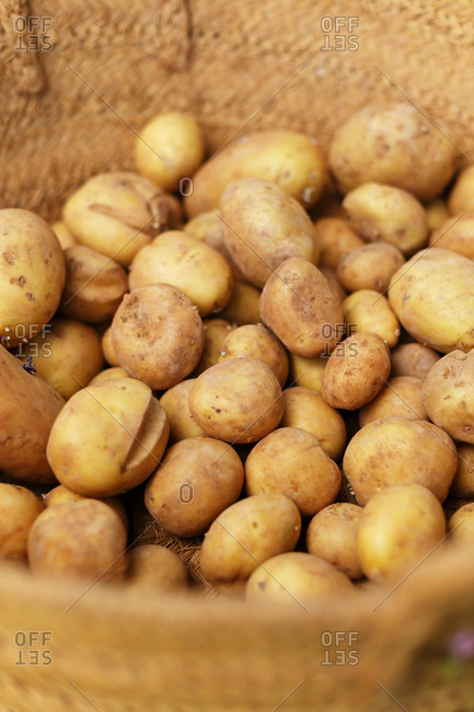 Looking into a  basket full of potatoes