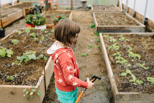 Young brunette girl spraying garden beds in greenhouse