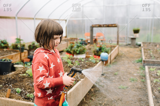Girl helping water greenhouse vegetables