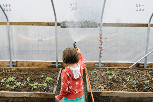Brunette girl spraying hanging vegetable bed on greenhouse wall