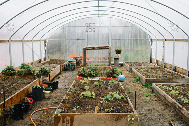 Raised vegetable garden beds inside large greenhouse