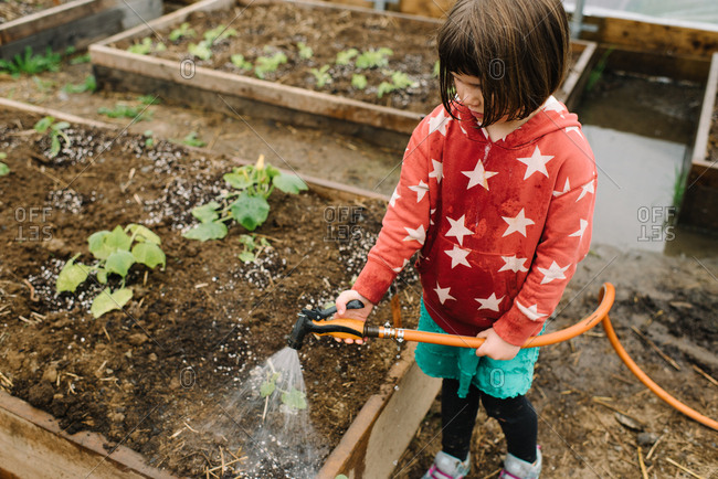 Higher angle view of young girl in hoodie helping water vegetables