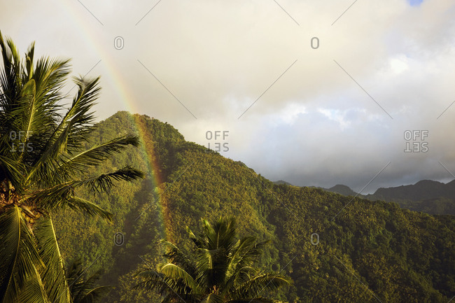 Scenic view of rainbow and tropical rainforest