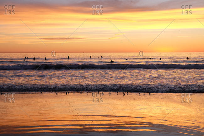 Silhouette of surfers in the water at sunset at the beach in Los Angeles, California