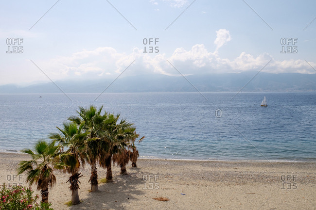 Scenic view of sailboat and palm trees on sandy beach