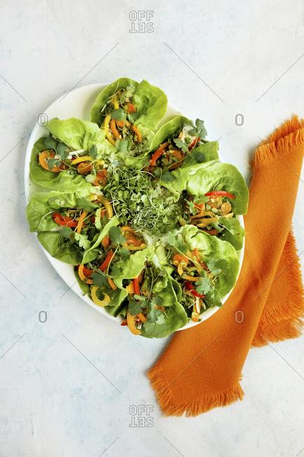 Top vie of vegetarian wraps arranged on platter