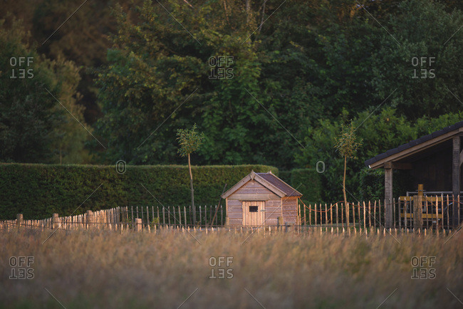 Little wooden shed in evening sun in backyard during spring.