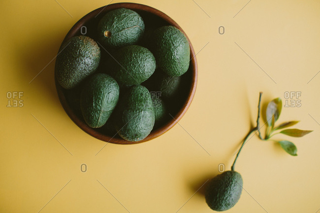 Bowl of avocados on yellow background