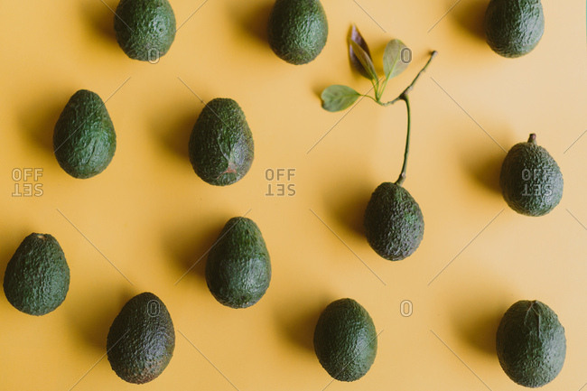Avocados arranged in a pattern