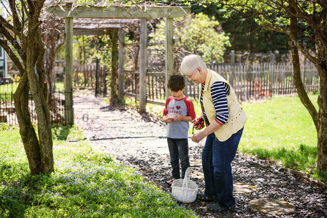 Grandmother and grandson gathering violets in the park