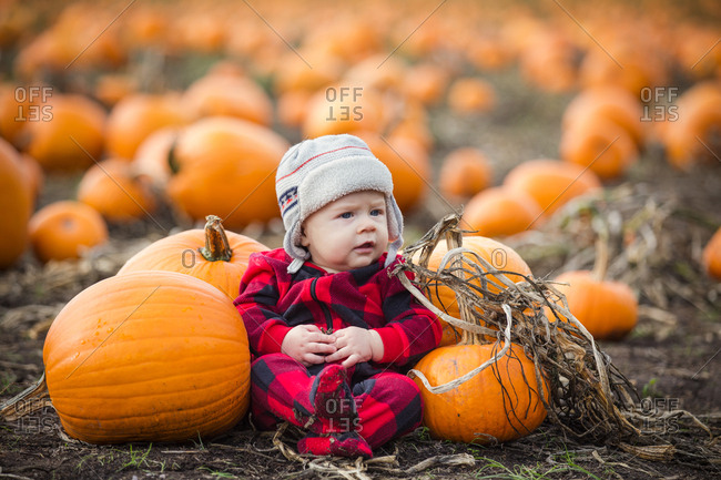 Baby sitting in a pumpkin patch