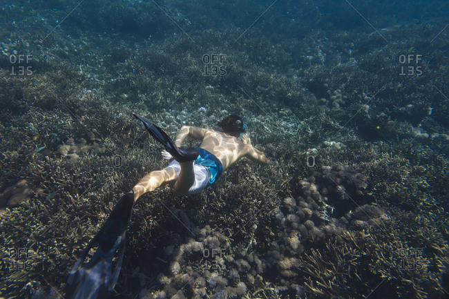Shirtless man snorkeling undersea