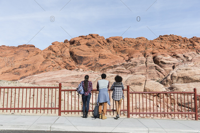 Rear view of friends looking at rock formations while standing by railing against sky during sunny day