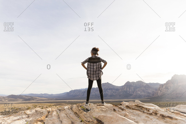 Rear view of woman looking at view while standing on rock formation against clear sky
