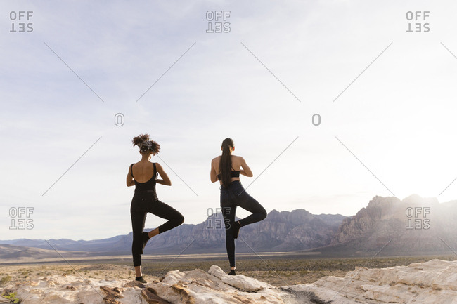 Rear view of female friends meditating while standing on rock formation against sky