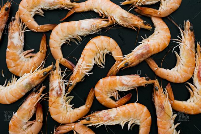Whole shrimp on black background