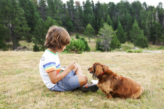 Boy feeding dog treats in a field