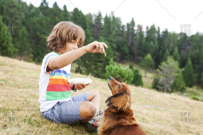 Young boy feeding dog snacks in a field