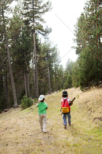 Two kids hiking with sticks