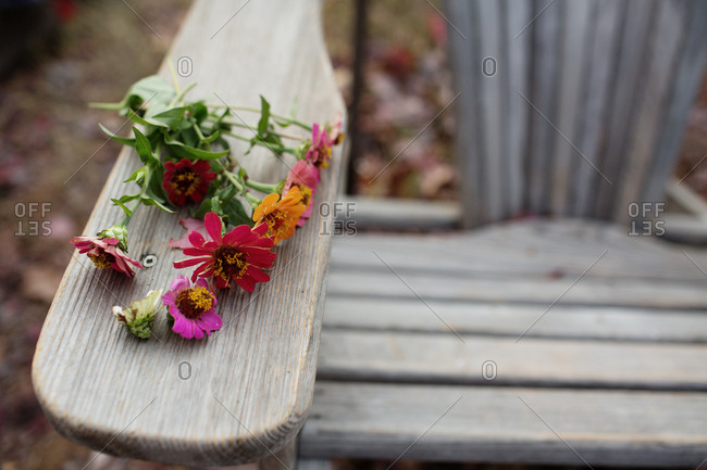Fresh picked zinnia flowers on a wooden outdoor chair
