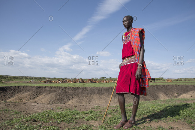 Maasai villager with his herd of cattle in the distance at Maasai Mara in Kenya