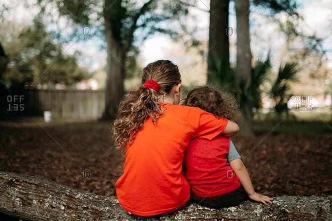 Back view of siblings hugging on log outside